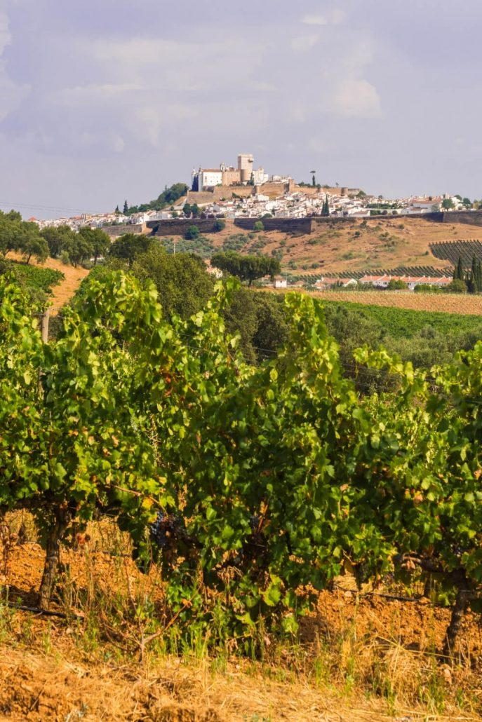 A picture of vineyards in the foreground and a walled city in the background in the Alentejo region of Portugal